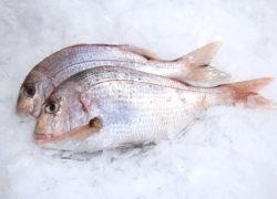 Pageot - LES PIRATES - poissonnerie - produits locaux - mediterranee - Mouans-Sartoux Grasse 06
