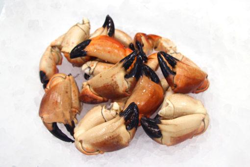 Pinces de crabes - LES PIRATES - poissonnerie - produits locaux - mediterranee - Mouans-Sartoux Grasse 06