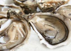 Huitres - LES PIRATES - poissonnerie - produits locaux - mediterranee - Mouans-Sartoux Grasse 06