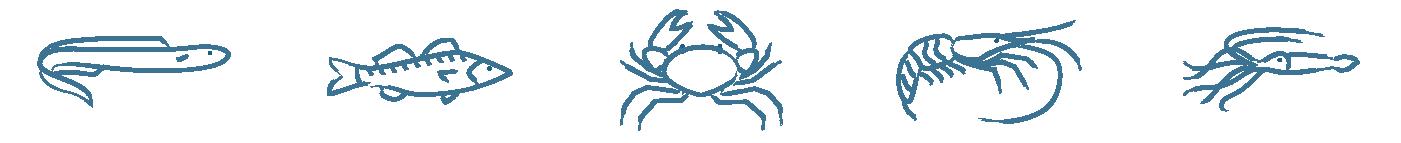 Prestations : buffets et animations d'événements - LES PIRATES - Poisson coquillage crustaces - Mouans-Sartoux Grasse